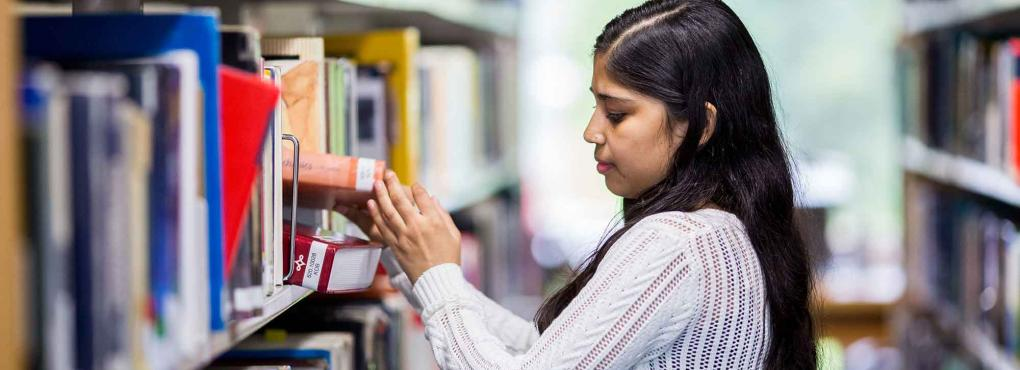 Student browsing the library shelves for books