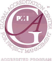 Master thesis in international project management